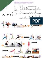 Yoga Dinamico Avanzados. Equilibrios Sobre Brazos