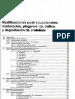 Tema 24 Modificacion Postraduccionales, Maduracion, Plegamiento, Trafico y Degracion de Proteinas