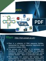 RNA Database