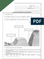 AVALIAÇÃO DIAGNÓSTICA DE GEOGRAFIA  - 4ºB - 3º Bimestre