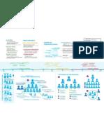 Diseño de organizaciones INFOGRAFIA
