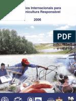 International Principles Portuguese Version2
