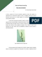 Líneas de terminación- Clínica de Prótesis Parcial Fija