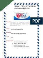 proyectoauditoriadesistemas-091106191633-phpapp01