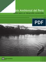 analisis ambiental del perú-onu