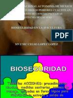 Bioseguridad Aves