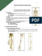 3.Sistema Osseo