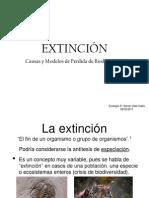 Extincion Daniel Vidal 060520