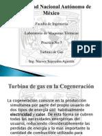 Practica 5 Turbina de Gas Total