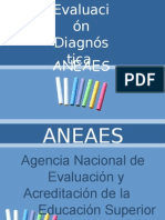 ANEAES