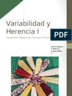 2B-Variabilidad y Herencia I  (2° medio A)