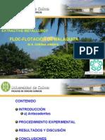 Floc Flotation