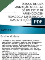 ORGANIZAÇÃO MODULAR DE UM CICLO DE APRENDIZAGEM