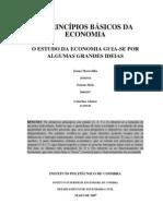 Dez princípios básicos da Economia