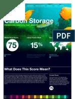 GoalsCarbon Storage