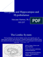 Limbic System lecture, 2008