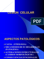 lesion-celular-y-acumulacion.ppt