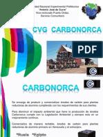 CVG_CARBONORCA