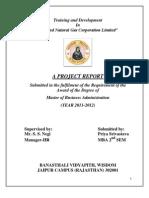 Final Report 2012 Training and Development
