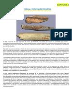 Nucleotidos, ácidos nucleicos e información genetica