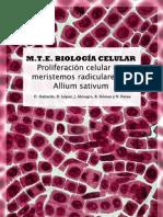 Proliferación Celular