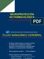 neuroproteccion