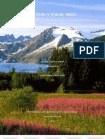 Autocad y Visual Basic