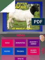 Diapositivas Manual Ovino
