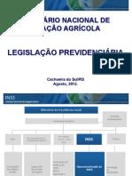 Palestra INSS - Seminário de Aviação Agrícola