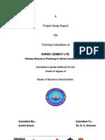 summertrainingprojectreportonhumanresourceplanningshreecementltd-100704130929-phpapp02_2