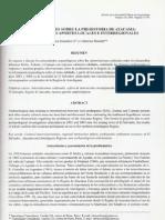Consideraciones Sobre La Prehistoria de Atacama 2005