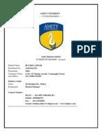 Synopsis(Ruchitasingh)(Amity Business School)