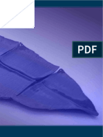 Convocatoria PECDAP 2013