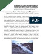 ArtigoSEVA BX Belomonte de MentirasVR10