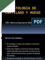 1 Tejido Oseo y Cartilaginoso Publicacion (1)