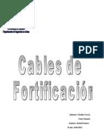 Informe Oficial Cables