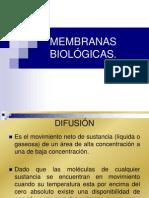 Osmosis y difusión