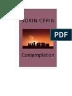 Sorin Cerin - Contemplation