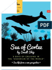 Sea Cortez Wb Vanderbilt