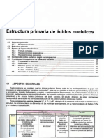 0-1tema 4 Estructura Primaria de Acidos Nucleicos
