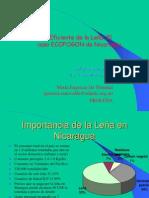 ECOFOGON_Proleña_Nicaragua_PPP