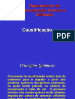 Caustificação II