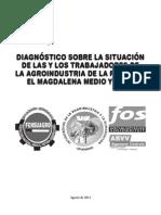 Informe Diagnostico situación laboral Magdalena Medio y Meta