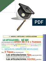 ARTICULACION IPD 2012