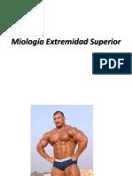Miología EESS EEII