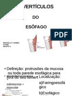 DIVERTÍCULOS DO ESÔFAGO FINAL