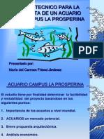 proyecto acuario