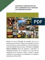 Las Zonas de Reservas Campesinas Zrc Una Alternativa Para La Permanencia en El Territorio de Los Campesinos de Arauca