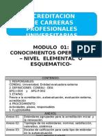 Ago-procedimiento de Acreditacion de Carreras Profesionales Universitarias[1]