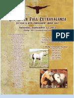 Bad River Extravaganza Horse Sale